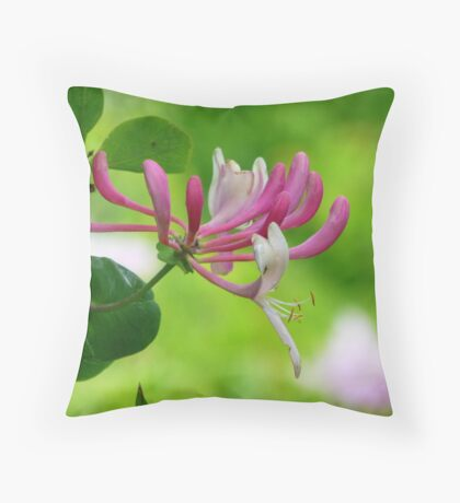 Lonicera Periclymenum 'Serotina' Throw Pillow