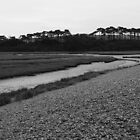 Budleigh Salterton (3) by CliveSluter