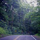 Drive Through by Tsebiyah Mishael Derry