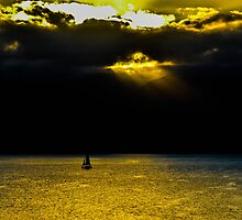 The Guiding Light by Stephen  Saysell