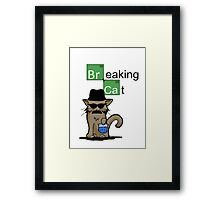 Breaking Cat  Framed Print