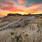 Driftwood Log Sunrise by fotosic