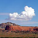 """Beaut In Arizona"" by Gail Jones"