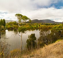 Derwent River, Tasmania #3 by Elaine Teague
