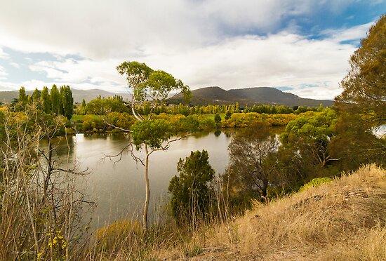Derwent River, Tasmania #3 by Elaine Teague