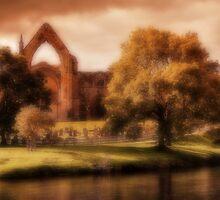 Bolton Abbey by Ian Jeffrey