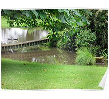 our pond on a dull day Poster