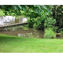 our pond on a dull day Photographic Print