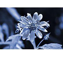 Seven 40 Seven Photographic Print