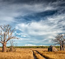 Off the Beaten Track by Mieke Boynton
