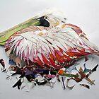 resting pelican by Ruud van Koningsbrugge