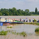 Rhine ferry at Meerbusch, NRW, Germany. by David A. L. Davies
