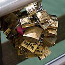 Locks on Ponte del Accedemica by terjekj