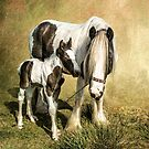 Me and My Mum by Tarrby