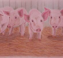 Piggies - Portraits for Charity (#1) by helenthedoodler