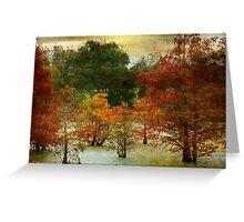 Cypress Greeting Card