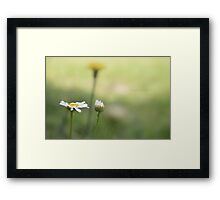But a dream within a dream... Framed Print