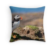 Puffin Standing on Cliff in Scotland's Inner Hebrides Throw Pillow