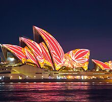 Sydney Opera House by David Smith