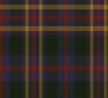 02839 Warren County, Ohio E-fficial Fashion Tartan Fabric Print Iphone Case by Detnecs2013