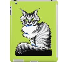 Maine Coon Tabby  iPad Case/Skin
