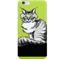 Maine Coon Tabby  iPhone Case/Skin
