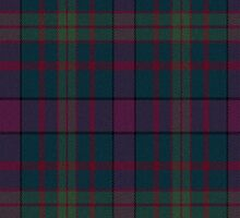 02843 Linn County, Iowa E-fficial Fashion Tartan Fabric Print Iphone Case by Detnecs2013