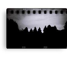 Dark Woods Canvas Print