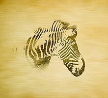 Zebra by Winterrr