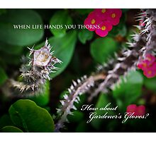 When life hands you thorns ... Photographic Print