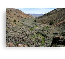 Canyon....outside Reno Nevada USA Canvas Print