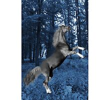 ☝ ☞ BLUE WONDER HORSE IPHONE CASE☝ ☞ by ╰⊰✿ℒᵒᶹᵉ Bonita✿⊱╮ Lalonde✿⊱╮