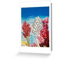 Alpinia purpurata – Red Ginger Flower, Nature in Bogota, Colombia  Greeting Card