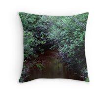 Creek - British Columbia Canada Throw Pillow
