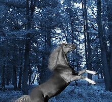 ๑۩۞۩๑BLUE WONDER HORSE CARD/PICTURE ๑۩۞۩๑ by ✿✿ Bonita ✿✿ ђєℓℓσ