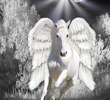 Ƹ̴Ӂ̴ƷANGELIC HORSE PICTURE/CARDƸ̴Ӂ̴Ʒ by ✿✿ Bonita ✿✿ ђєℓℓσ