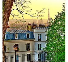 Yellow spring landscape of Paris, tipycal house Photographic Print