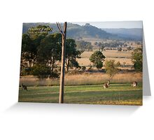 Rural Scene - Hunter Valley, NSW Greeting Card
