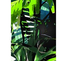 garden painting 3 Photographic Print