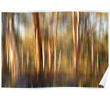 Spirited Gum Trees Poster
