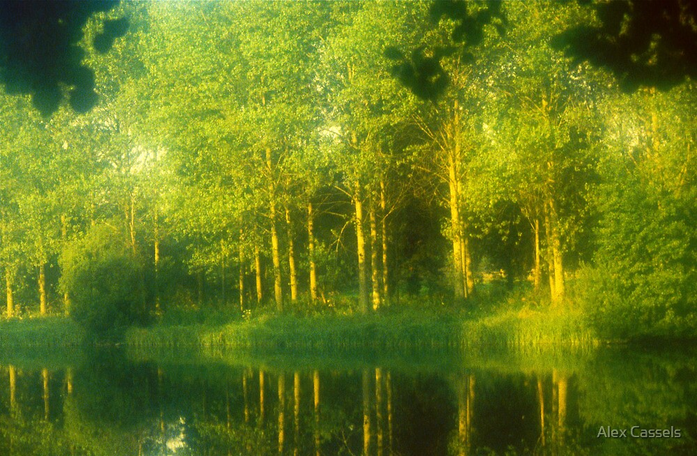 Dream in Green by Alex Cassels