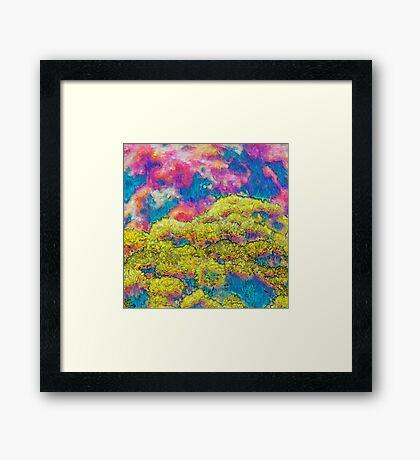 Marigolds in Impressionist Oils Framed Print