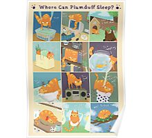 Where Can Plumduff Sleep? Poster