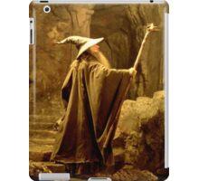 Gandalf the Grey (iPad/iPhone/iPod) iPad Case/Skin