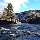 The Truckee River,Reno Nevada USA by Anthony & Nancy  Leake