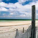 The green sea by Jeff  Wilson