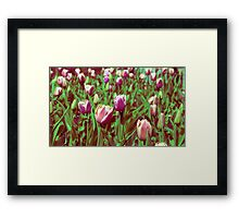 Flowers on the mountain  Framed Print