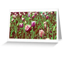 Flowers on the mountain  Greeting Card