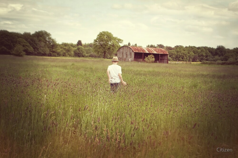 The boy and the barn by Nikki Smith