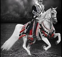 ·٠•● █░║► RIDING THE ARABIAN STORM PICTURE/CARD  ◄║░█ ●•٠· by ✿✿ Bonita ✿✿ ђєℓℓσ